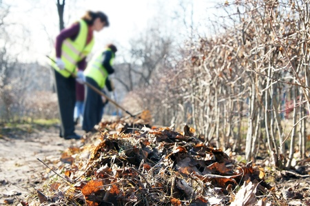 Cleaning of the autumn fallen down leaves Stock Photo - 10510390