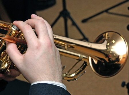 brass band: The jazz musician plays music on a  trumpet