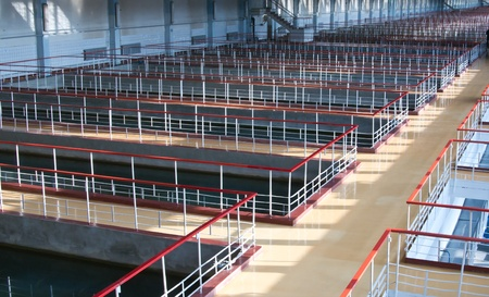 organic waste: Technical pool for water treating