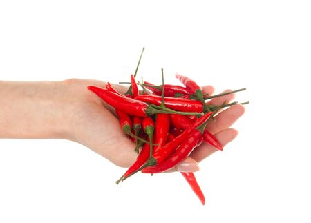 Pods of hot red pepper on a white background Stock Photo - 13779344