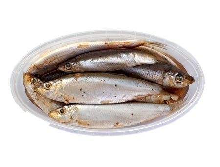 sprat: the salted sprat in a plastic box, it is isolated on the white