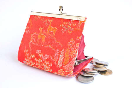 mini purse: Carrying small change