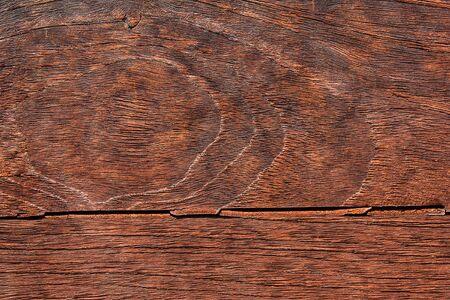 Close-up of a pattern of teak wood. photo