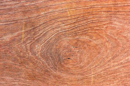 Close-up of a pattern of teak wood. photo