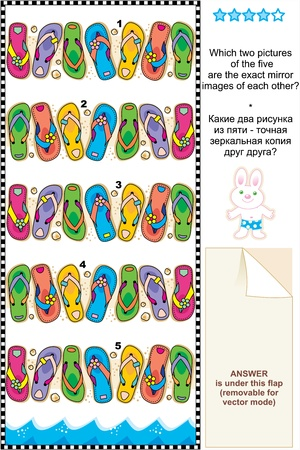 Picture riddle or visual puzzle suitable both for kids and adults  Which two pictures of colorful flip-flops are exact mirror images of each other  Answer included