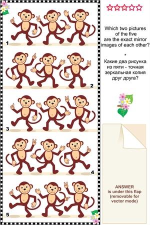 수수께끼: 도보 원숭이의 두 사진이 포함 된 각각의 다른 답변의 정확한 미러 이미지입니다 그림 수수께끼 또는 시각적 퍼즐