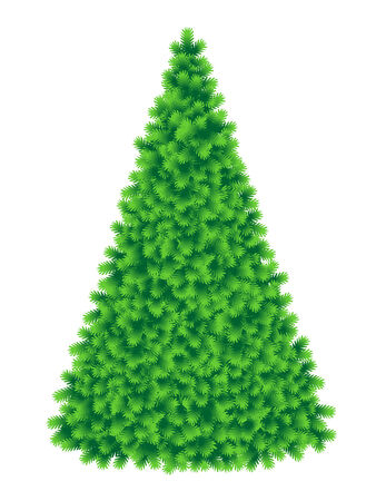 bare: Christmas tree, tall and fluffy, of live green color, without baubles, ornaments and gifts, isolated on white, ready to trim it as needed Illustration