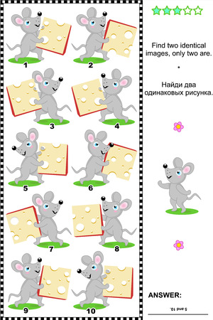 identical: Visual puzzle  Find two identical images of happy mice with cheese slices  plus same task text in Russian   Answer included  Illustration