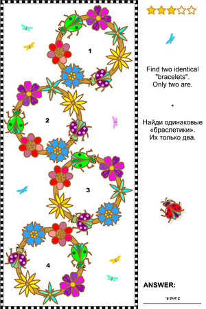 quizzes: Visual puzzle with bugs and flowers  Find two identical bracelets  plus same task text in Russian   Answer included