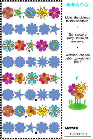 quizzes: Visual puzzle or picture riddle  Match the pictures of flower rows to their shadows  plus same task text in Russian and German   Answer included