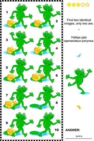 identical: Visual puzzle  Find two identical images of playful frogs  Answer included