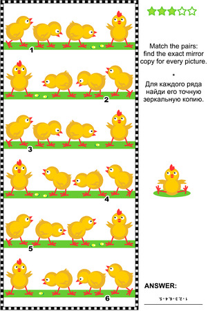 chicks: Visual logic puzzle: Match the pairs - find the exact mirror copy for every picture - row of chicks. Answer included.
