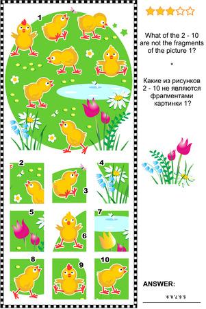 Visueel logische puzzel met schattige kleine kuikens: Wat van de 2-10 zijn niet de fragmenten van de foto 1? Inbegrepen antwoord.