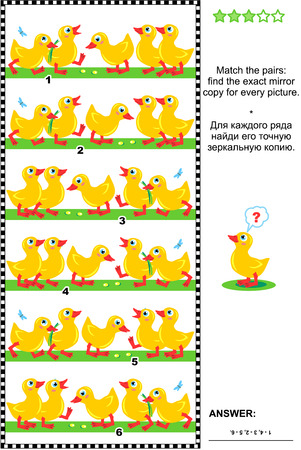 brainteaser: Visual logic puzzle or picture riddle: Match the pairs - find the exact mirrored copy for every row of cute little ducklings. Answer included.