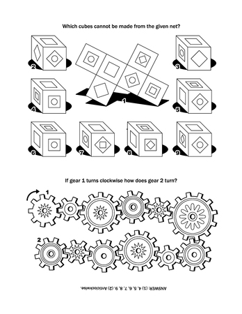 Puzzle page with two puzzles: Which cubes cannot be made from the given net If gear 1 turns clockwise how does gear 2 turn Answer included.