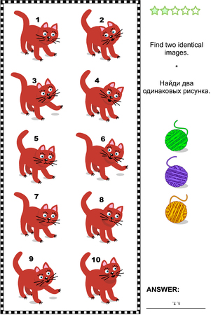 identical: Visual puzzle: Find two identical images of red cats. Answer included.