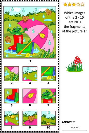Visual logic puzzle with umbrella, gumboots and happy frog outdoor at rainy summer or autumn day, which images of the 2 - 10 are not the fragments of the picture 1. Illustration