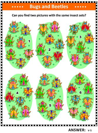 Visual puzzle with bugs and beetles: Can you find two pictures with the same insect sets? Answer included. Illustration