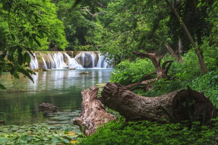 Waterfall in tropical forest,Thailand Stock Photo - 21066554