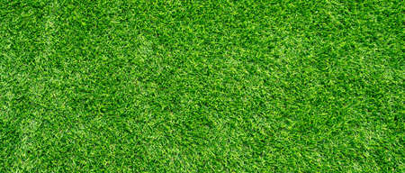 Green grass texture background, Top view of grass garden Ideal concept used for making green flooring Foto de archivo