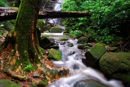silky waterfall on mountain at Phu Soi dao National park in thailand Stock Photo - 6994738