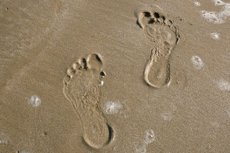 footprints on the sand at the beach photo
