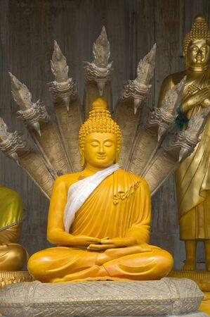 phuket province: buddha image statue at Phuket province Thailand