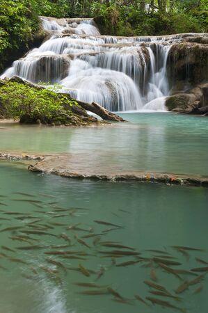 waterfall in tropical forest at Eravan national park Kanchanaburi province Thailand Stock Photo - 13243328