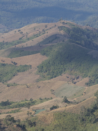 vertica: Rural areas, Nan, Thailand (vertical)