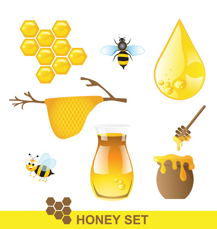 Honey set Vector Vector