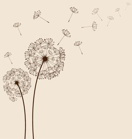 Dandelions on cream background  Illustration