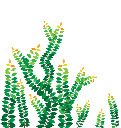 ivy vine: Green leaves on the wall  Illustration