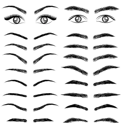 Eyes  eyebrow   women and man vector Çizim