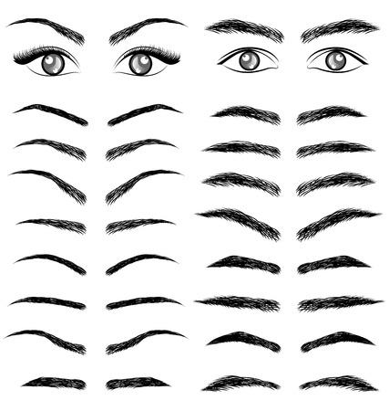 Eyes  eyebrow   women and man vector Vectores