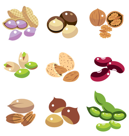 soy bean: Collection of Beans vector