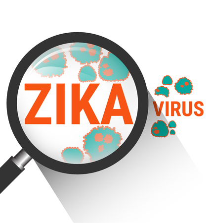 Magnifying glass with Zika virus molecule Vettoriali