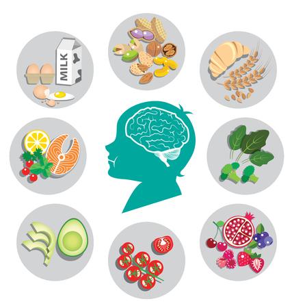 Le migliori alimenti per la salute del cervello e l'energia con testa umana Archivio Fotografico - 57461622