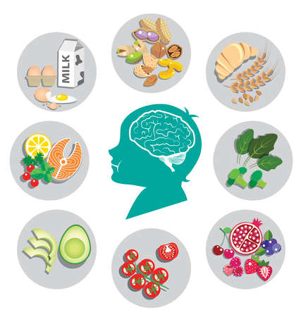 Best foods for brain health and energy with human head