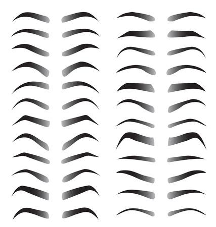 eyelid: Set of women eyebrows for beauty concept on white background Illustration