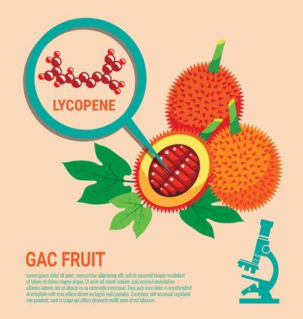 Gac Fruit health Benefits of Lycopene with Microscope