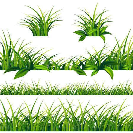 Spring green grass borders set on white background. Иллюстрация