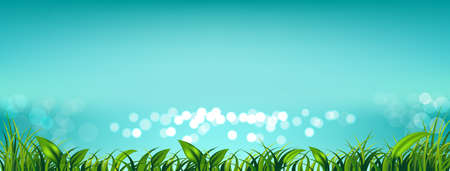 Blue sky with fresh green grass and light bokeh the sea for Spring or summer background