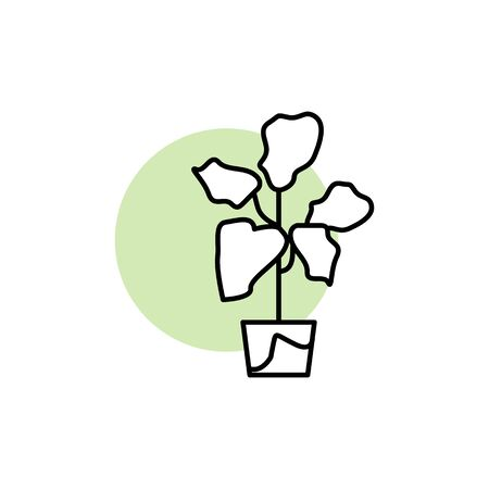 Fiddle-leaf fig, plant icon. Simple line, outline vector elements of flora with green circle for ui and ux, website or mobile application on white background Illustration