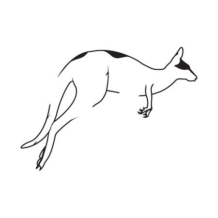Kangaroo logo. Silhouette vector symbol of kangaroo for design companys logo, tattoo, visit card, etc. Monochrome sign of animal. Illustration