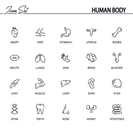 Jeu d'icônes plat corps humain. Collection de symboles de contour de haute qualité des organes internes pour la conception de sites Web, application mobile. Icônes de fine ligne de vecteur ou logo des yeux, des os, du c?ur, de la colonne vertébrale, du cerveau, etc.