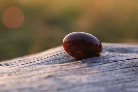 Deep red moss agate on wood. Moss agate is a semi-precious gemstone formed from silicon dioxide, which includes minerals embedded in the stone, forming filaments and other patterns suggestive of moss Stock Photo