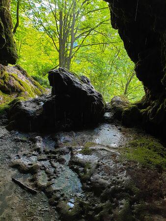Forest seen from cave entrance at Pietrele Vorbitoare waterfalls, lush green vegetation growing on limestone wall. Travertine waterfall in Sipote - Trascau mountains, Apuseni, Transylvania, Romania Foto de archivo - 150078968
