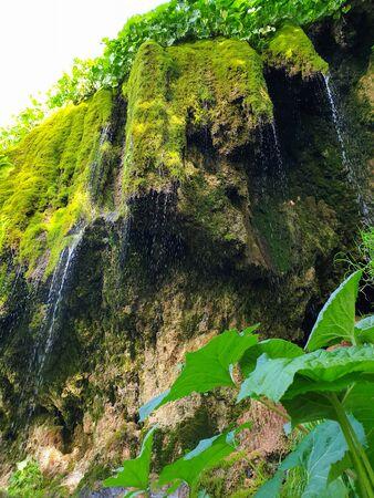 Pietrele Vorbitoare waterfalls, lush green vegetation growing on limestone wall. Travertine waterfall in Sipote - Trascau mountains, Apuseni area, Transylvania, Romania