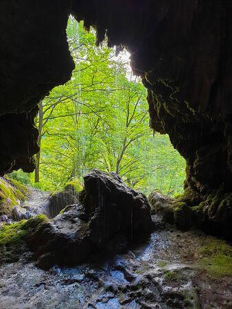 Forest seen from cave entrance at Pietrele Vorbitoare waterfalls, lush green vegetation growing on limestone wall. Travertine waterfall in Sipote - Trascau mountains, Apuseni, Transylvania, Romania Foto de archivo - 150079024