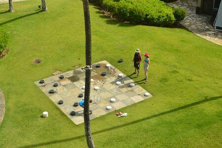 Chess match in hawaii grass, Big Island, USA.